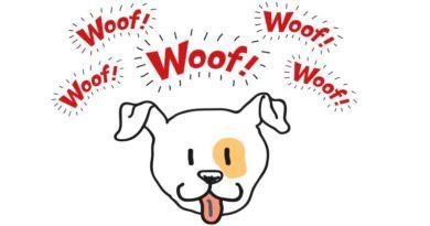 Latidos desvendados: entenda melhor o seu cão