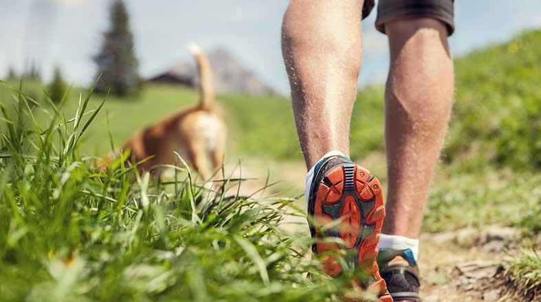 4 raças ideais para quem gosta de fazer trilha
